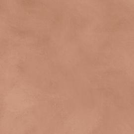 geboortekaartje achtergrond terra velvet